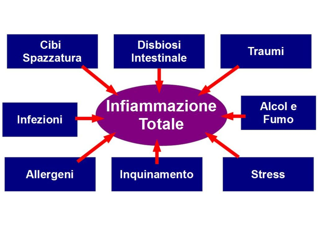 inflammaging